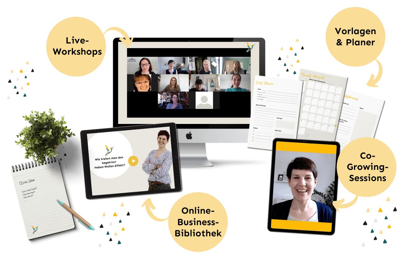 Instagram Starter Kit fürs Online-Business